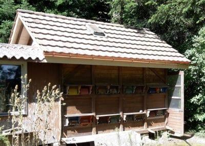 Dachsanierung Bienenhaus Wittenwil