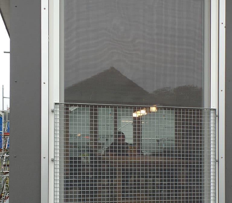 Mückengitter in Balterswil