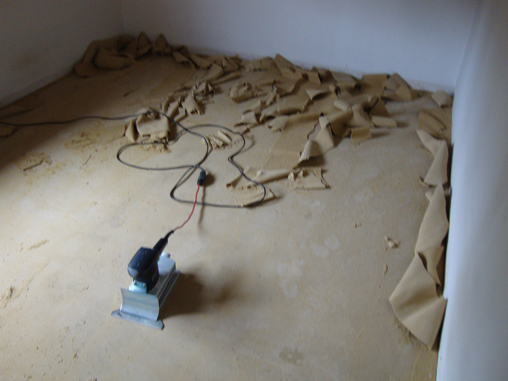 Hundekot Aus Teppich Entfernen